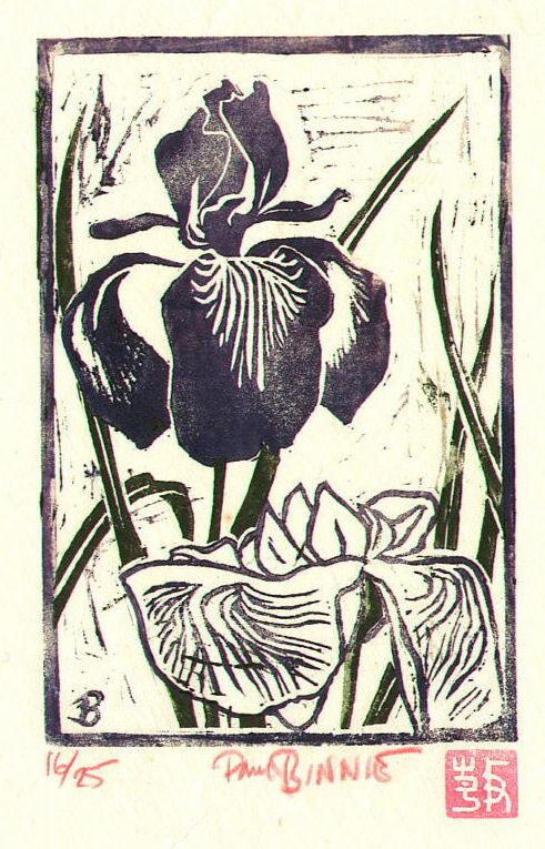 "Paul Binnie ""Iris"" main image"