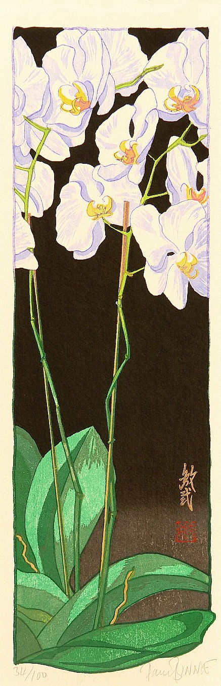 "Paul Binnie ""Orchids - Night"" main image"