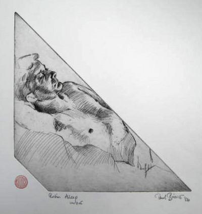 "Paul Binnie ""Robin Asleep"" main image"